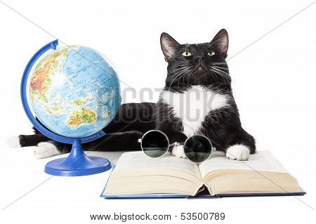 Black Cat With A Globe, A Book And Glasses