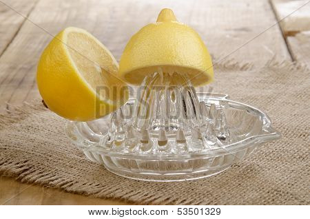 Lemon On A Lemon Squeezer