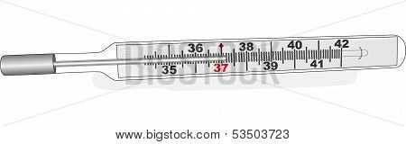 Glass Thermometer With Shadow