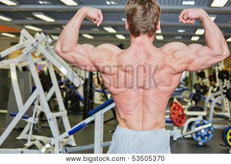 Bodybuilder poses in gym hall demonstrating tense muscles of his back