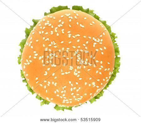 Top of big hamburger