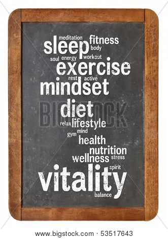 cloud of words or tags related to vitality or vital energy concept on a  vintage slate blackboard isolated on white