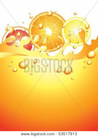 Juicy Citrus Splashes Vector Background