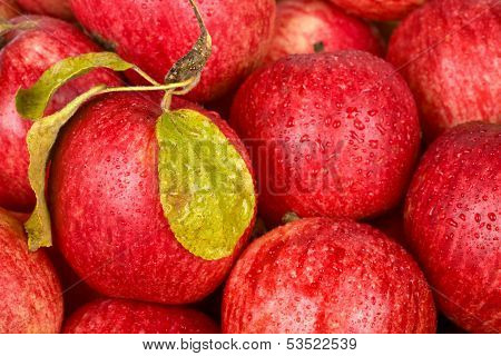 Background Of Red Apples With Drops Of Water