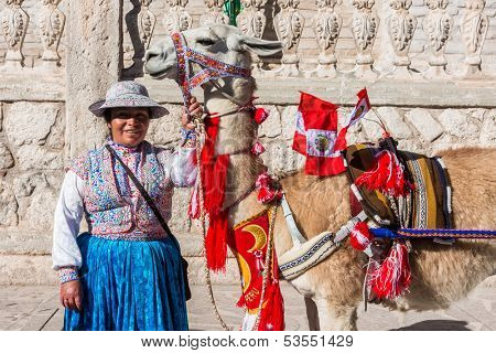 CHIVAY, PERU - JULY 29: Llama with peruvian flags and woman the peruvian Andes at Arequipa Peru on july 29th, 2013. The llama is a domesticated South American camelid, widely used by Andean cultures.