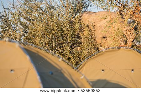 Elephant and ridge tent