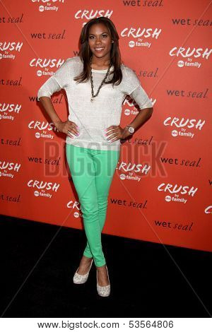 LOS ANGELES - NOV 6:  Lindsey Harding at the CRUSH by ABC Family Clothing Line Launch at London Hotel on November 6, 2013 in West Hollywood, CA