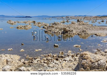Mono Lake Shore And Tufa Formations, California