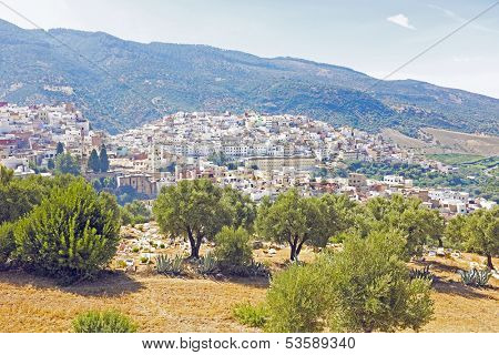 Moulay Idriss is the most holy town in Morocco.  It was here that Moulay Idriss I arrived in 789, bringing with him the religion of Islam and starting a new dynasty.