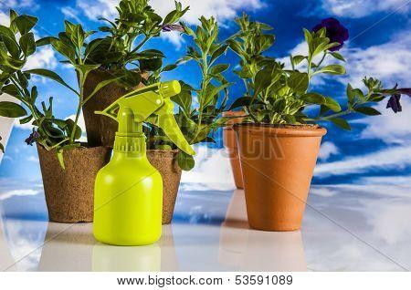 Garden, gardening stuff