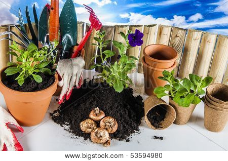 Garden stuff with vivid colors, rural concept