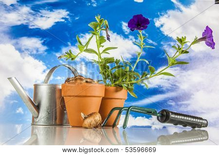 Gardening with rural stuff