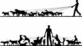 foto of dog-walker  - Two foreground silhouettes of a man walking many dogs with all elements as separate editable objects - JPG
