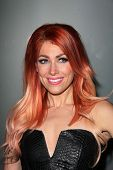 LOS ANGELES - NOV 7:  Bonnie McKee at the Flaunt Magazine November Issue Party at Hakkasan on Novemb