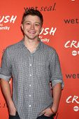 LOS ANGELES - NOV 6:  Sterling Knight at the CRUSH by ABC Family Clothing Line Launch at London Hote
