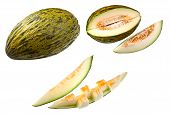 picture of melon  - Piel de Sapo Melon - JPG