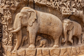 picture of gang  - Elephants on descent of the Ganges and Arjuna - JPG