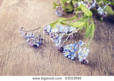 Forget Me Not Flowers On Old Wood Table