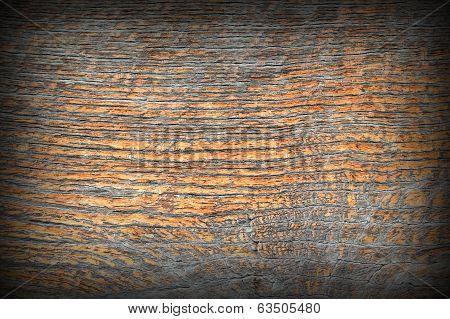 Ancient Oak Wood Texture