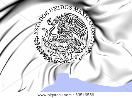 Federal Government Of Mexico Seal