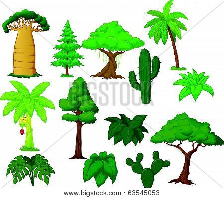Various tree cartoon collection