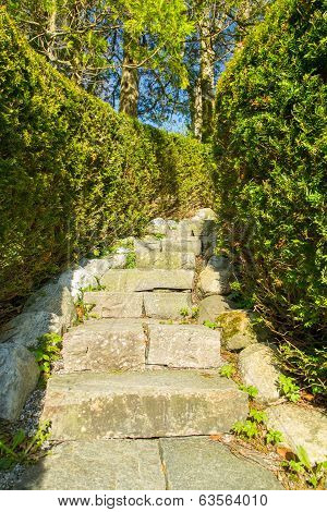 Stairway In Stone