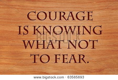 Courage is knowing what not to fear - quote by Plato on wooden red oak background