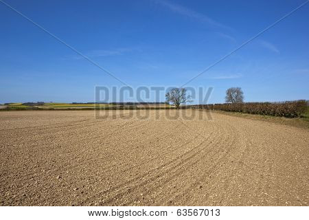 Chalky Cultivated Field