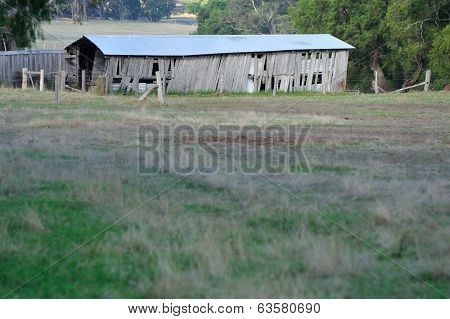 An Old Farm Shed