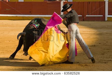 Badajoz Arena Bullfighting