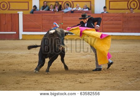 Bullfight With Capote