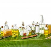 Banana leaf background- Health spa