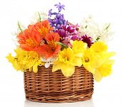 Beautiful flowers in wicker basket, isolated on white