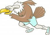 picture of buzzard  - Illustration of a vulture buzzard condor runner running a marathon viewed from side on isolated white background done in cartoon style - JPG