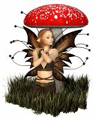foto of toadstools  - Pretty fairy with brown wings sheltering under a toadstool - JPG