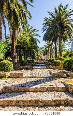 Alfabia gardens in Mallorca