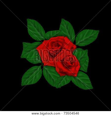 Roses With Leaves Red Rose Isolated On Balck Background