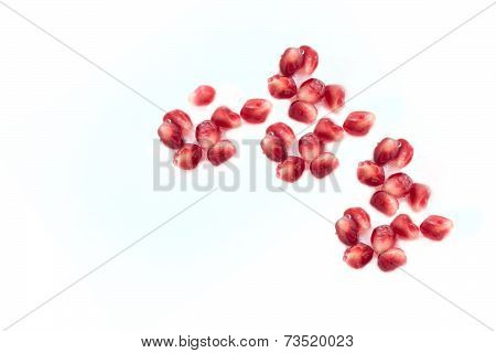 The Pomegranate Frui