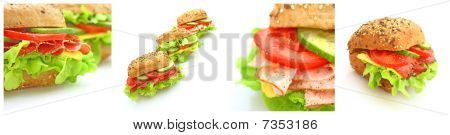 Collage of many different fresh sandwichs with cheese or ham