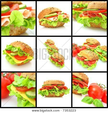 Collage of many different fresh sandwiches