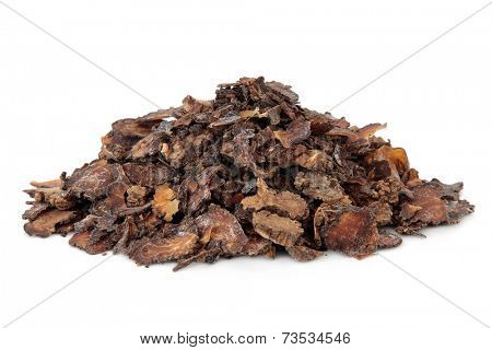 Szechuan lovage root used in chinese herbal medicine over white background. Chuan xiong.