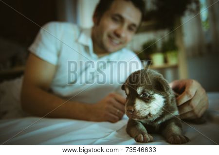 Image of cute little puppy in hands of young man closeup indoor