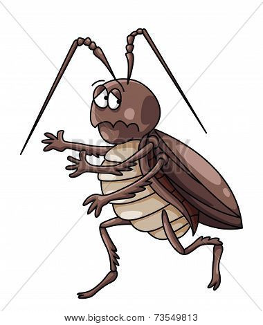 cockroaches Cartoon Illustration