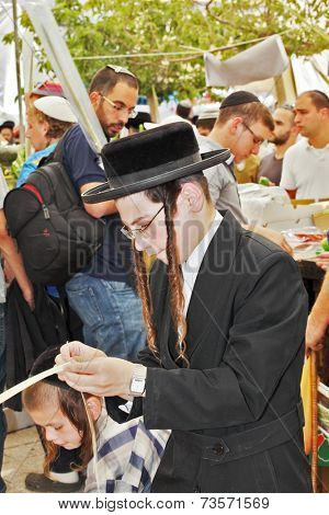 JERUSALEM, ISRAEL - SEPTEMBER 18, 2013: Young religious Jew with long sidelocks carefully chooses ritual plant - myrtle for Sukkot.