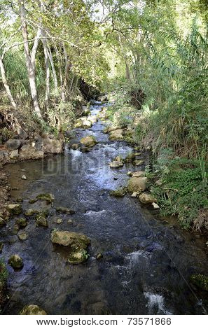 Hermon River At Summer, Israel.