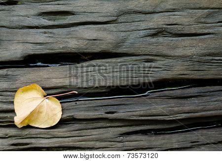 Crack Hard Wood With Dried Leaf Background