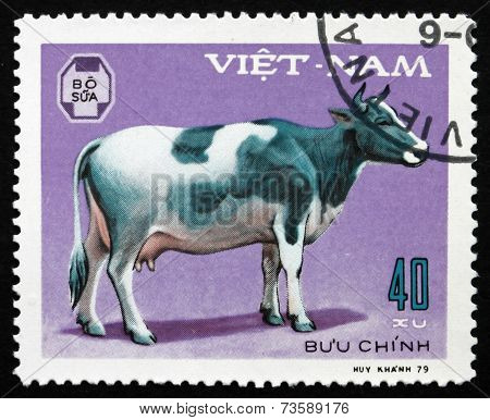 Postage Stamp Vietnam 1979 Cow, Domestic Animal
