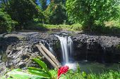 picture of samoa  - Exotic waterfall on the island of Upolu in Samoa - JPG