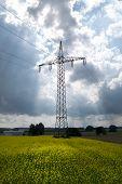 pic of rape-field  - Power pole in a blooming rape field in an approaching thunderstorm  - JPG