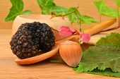 picture of truffle  - Black truffle in wooden spoon and hazelnut on wooden background decorated with some green and red leaves - JPG